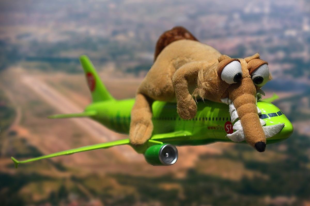 Как сделать так чтобы не боятся летать 796
