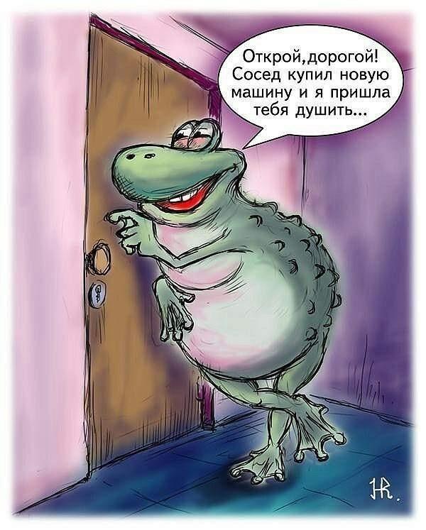 Жаба - зверь очень опасный