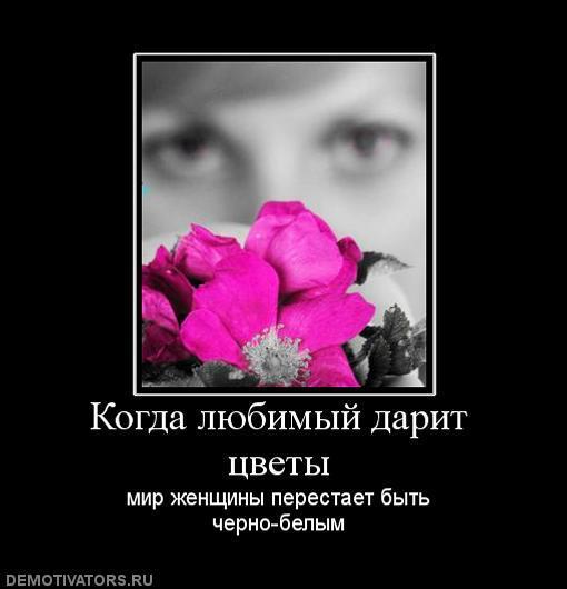 Статус я подарю тебе цветы