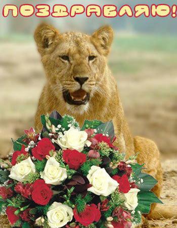 Красивые поздравления для Льва на день рождение