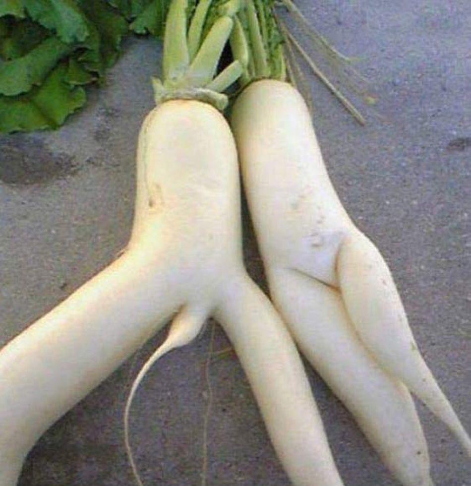 овощи в пизде фото № 869080 бесплатно
