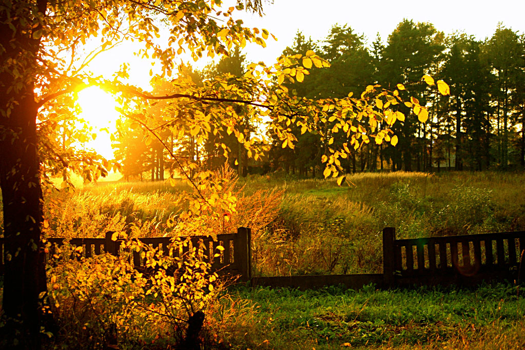 Картинки о конце лета и начале осени