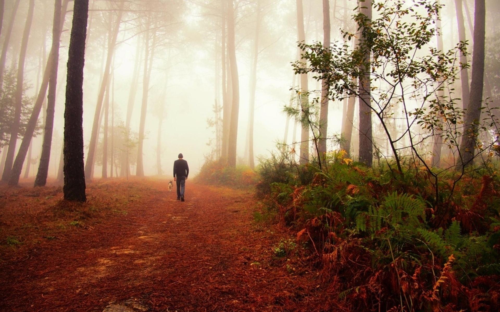 фото конкурс жизнь леса и судьбы людей порчу