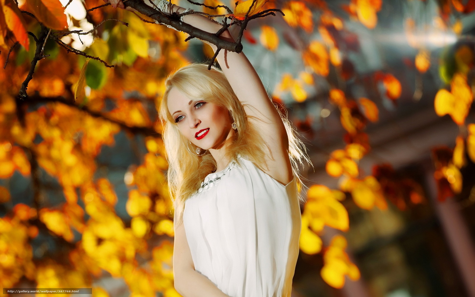 блондинка на осенней прогулке загрузить