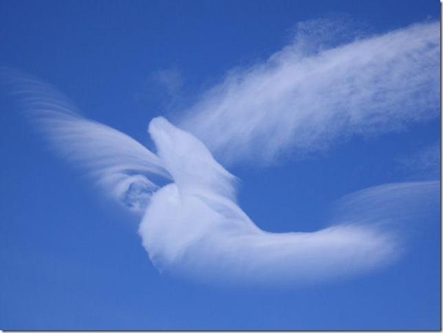 облака плывут облака в разном исполнении предпочитаете бегать зале