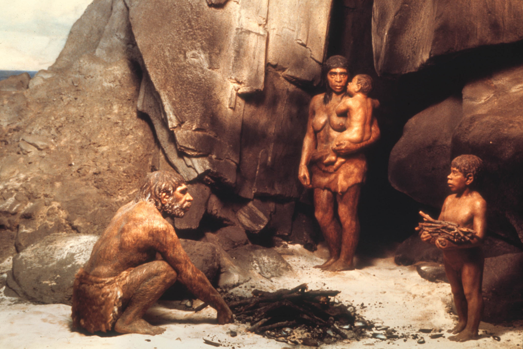 When our ancestors first migrated out of Africa around 60000 years ago they were not alone At least two of our hominid cousins had made the same journey