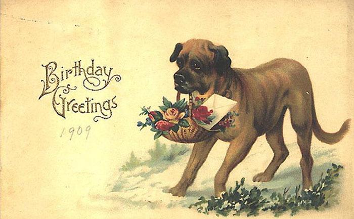 С днем рождения щенков открытки, картинки