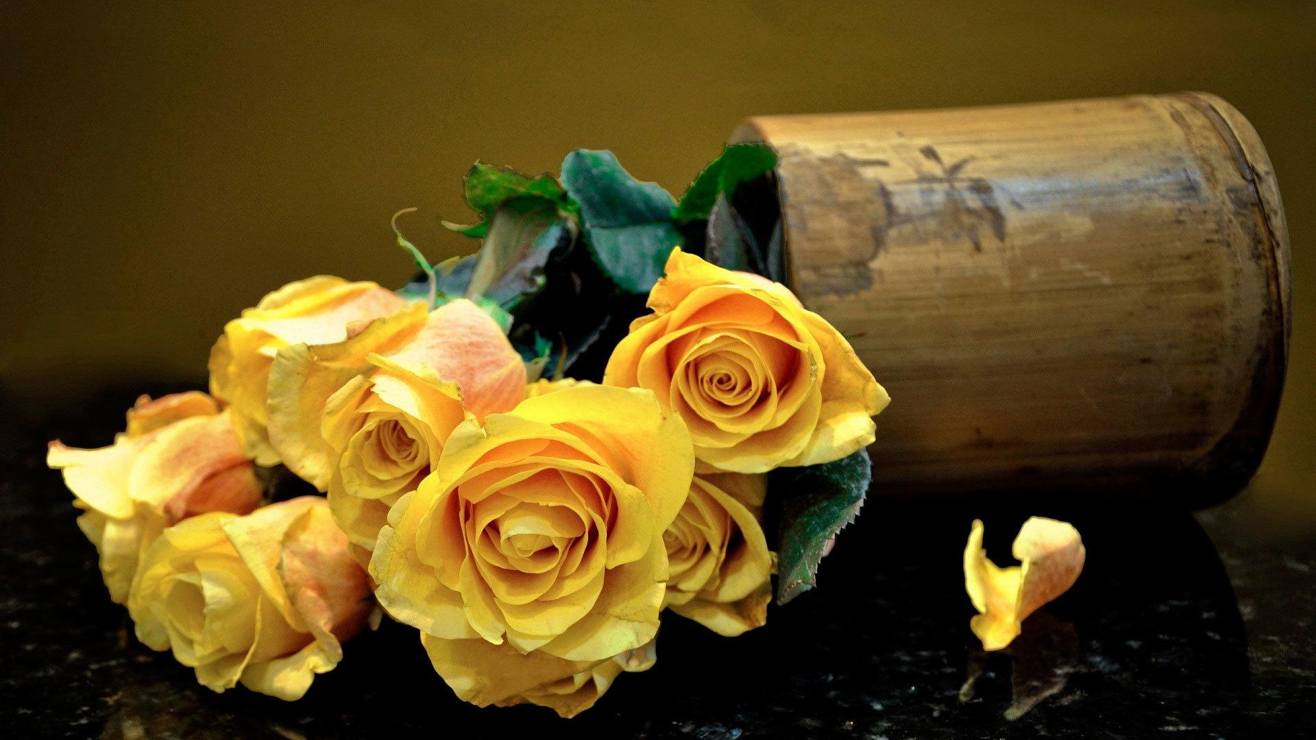 розы, желтые, букет, зелень анонимно