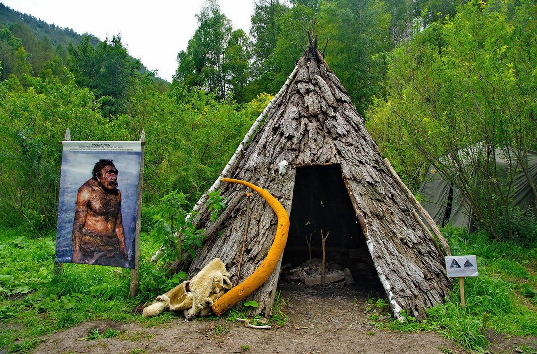 итоге древние жилища человека картинки удостоверения