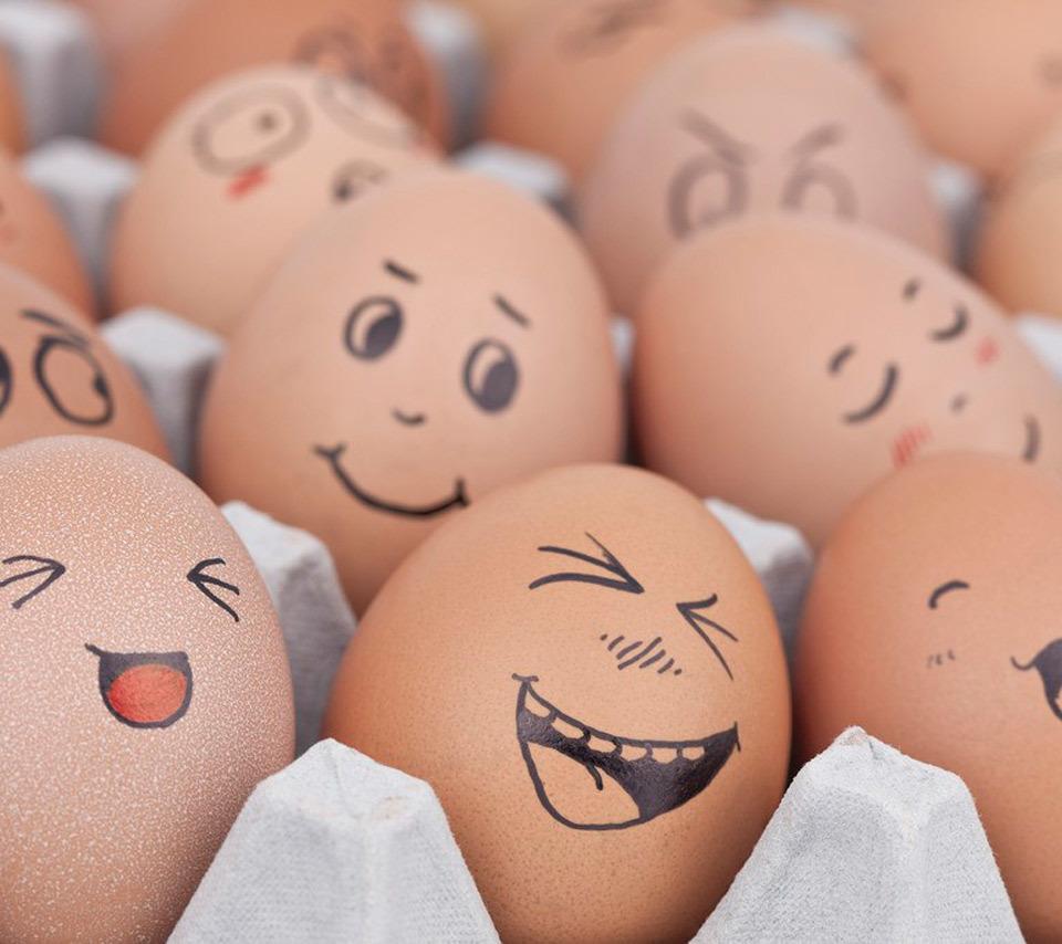 Прикольные картинки про яйца и пасху