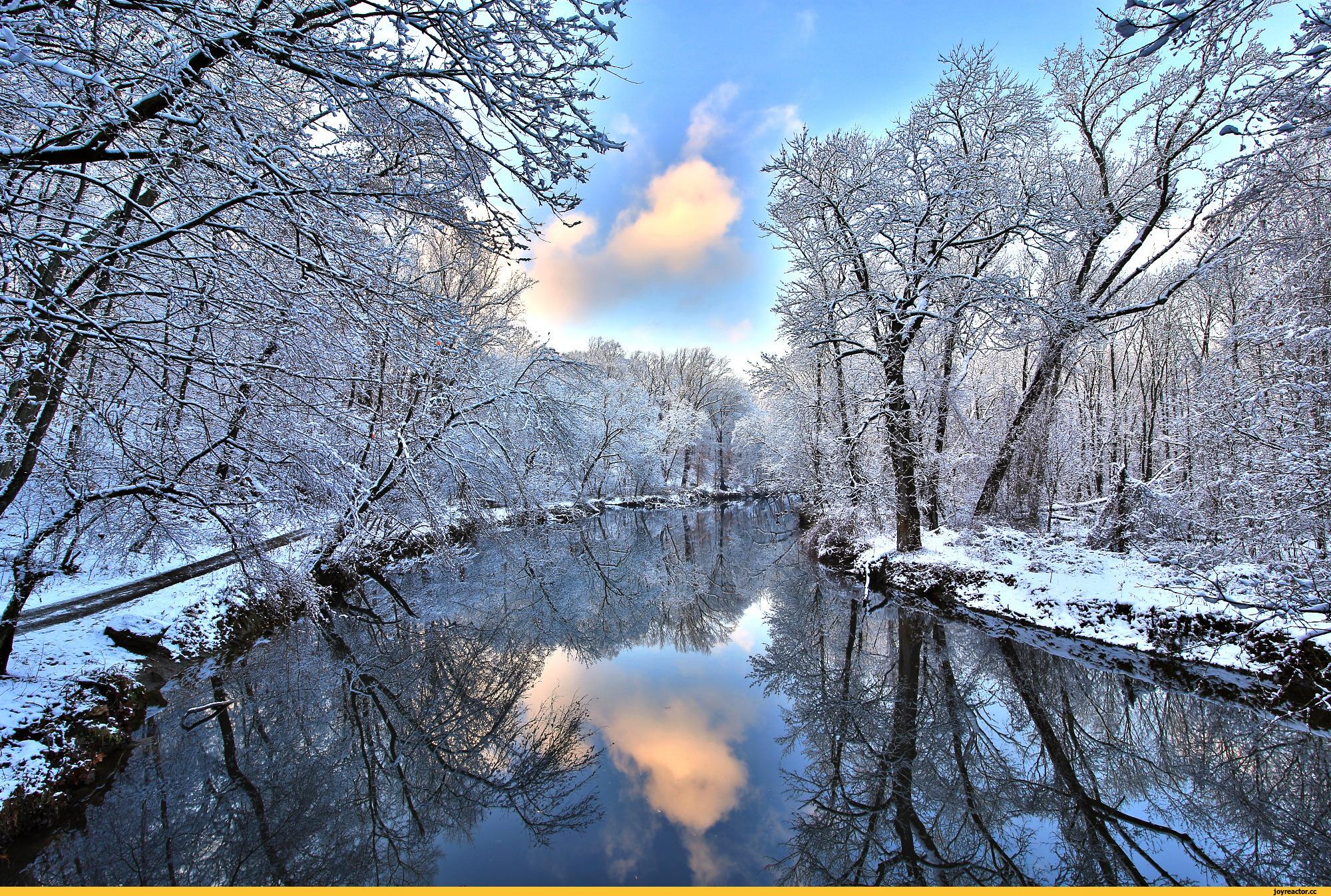 природа река снег зима деревья nature river snow winter trees бесплатно